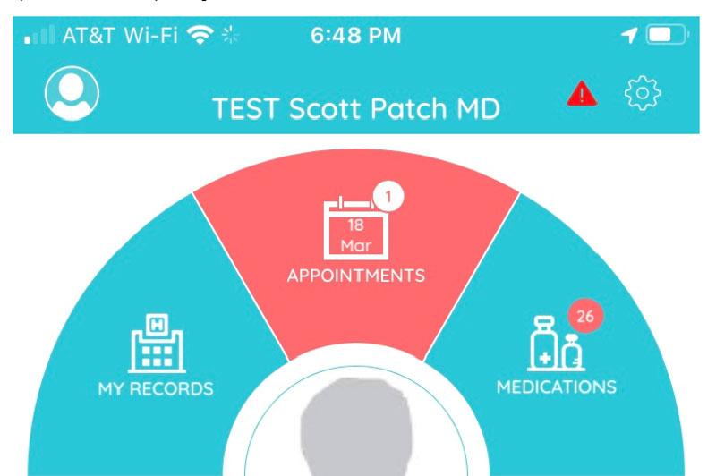 A screenshot of the wheel in the Healow App